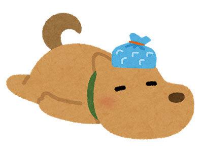 ひょうのう犬