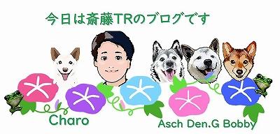 Jun-Saito7.jpg