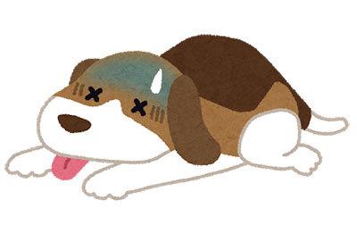 pet_byouki_dog.jpg