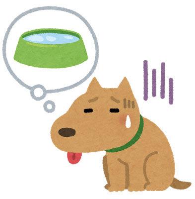 pet_dog_thirsty.jpg