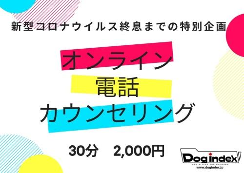 1586007544.jpg
