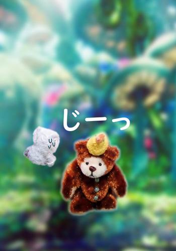 森カフェ七夕11b