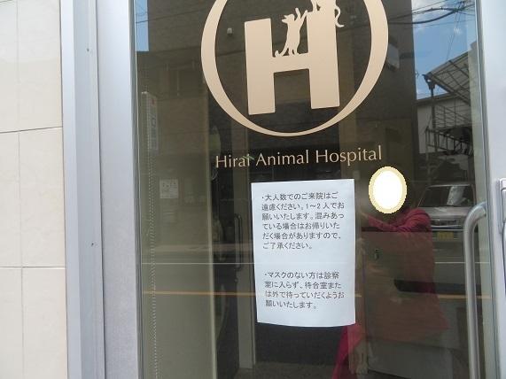 5B03S 平井動物病院 0507