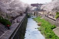 Shakujii_River_(25999812430) (1)