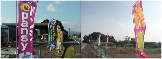 201116河合農園-2