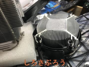 s-20200320010.jpg