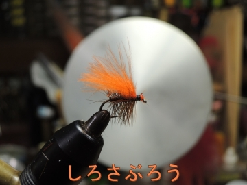 s-20200418035.jpg