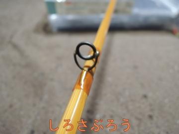 s-DSCN3148.jpg