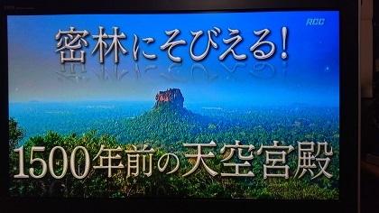 DSC_0000_BURST20200607012021961.jpg