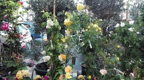 セーヌ河岸、花屋さん