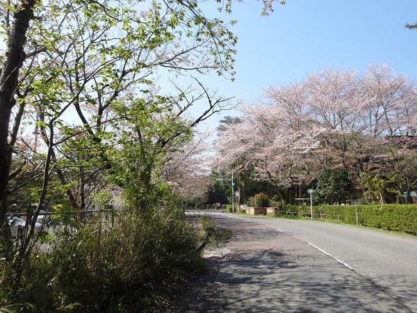 200404幕張_佐倉_吉高 (2)