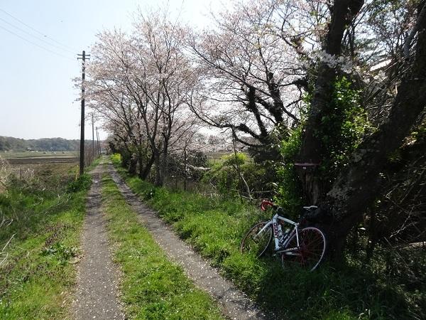 200404幕張_佐倉_吉高 (3)