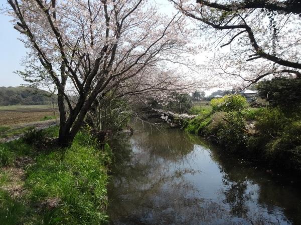 200404幕張_佐倉_吉高 (4)