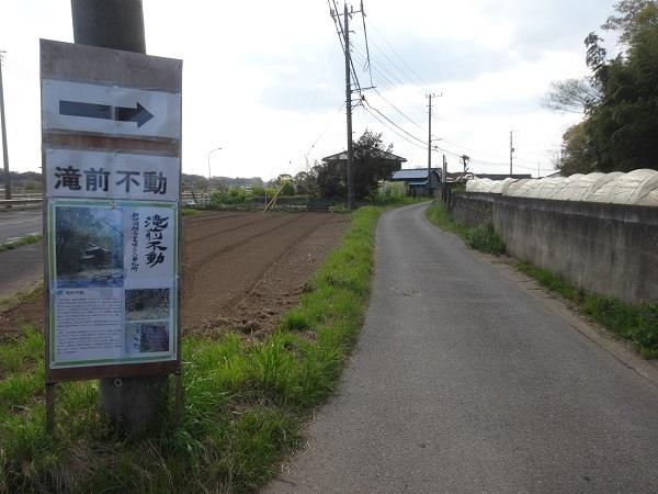 200411お散歩手賀沼 (6)