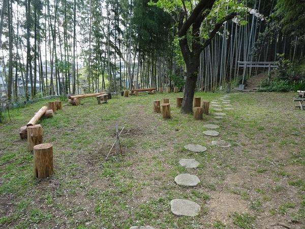 200411お散歩手賀沼 (7)