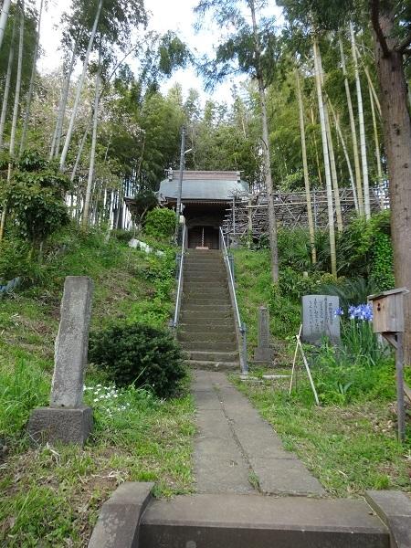200411お散歩手賀沼 (11)