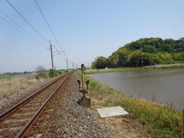 200502手賀沼他 (8)