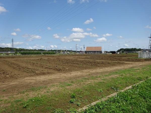 200524印旛沼 (6)