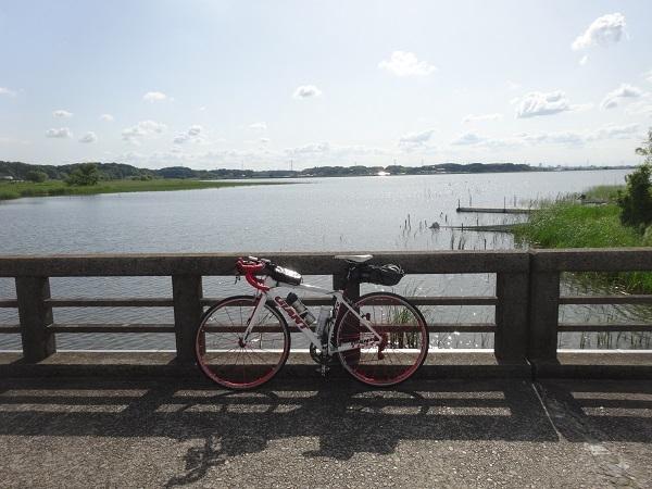 200524印旛沼 (12)