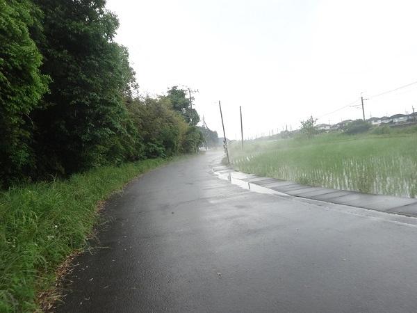 200530成田 (10)