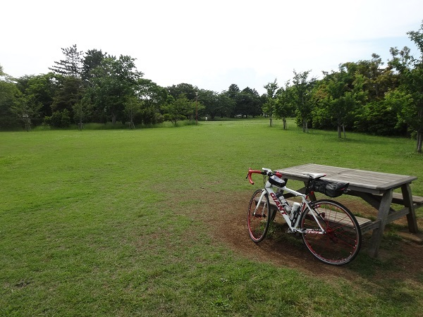 200530成田 (12)