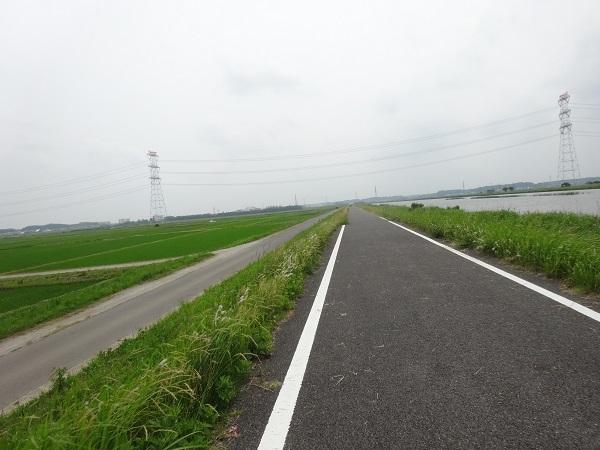 200606印旛沼と小貝川 (2)