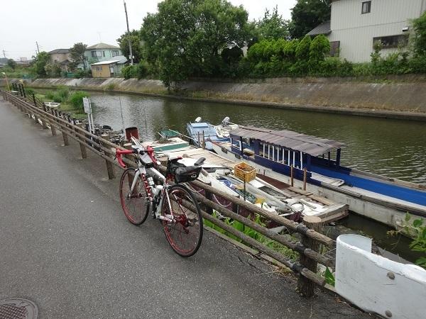 200606印旛沼と小貝川 (4)
