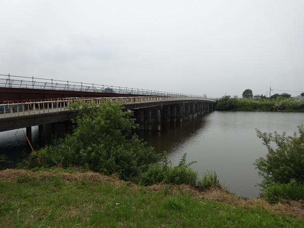 200606印旛沼と小貝川 (6)