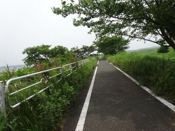 200606印旛沼と小貝川 (8)