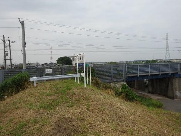 200606印旛沼と小貝川 (16)