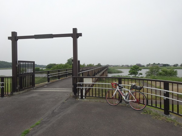 200606印旛沼と小貝川 (18)