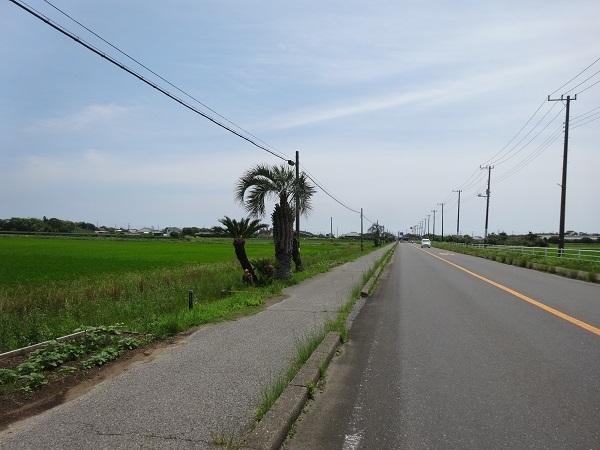 200622九十九里 (16)