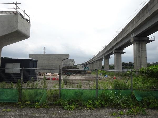 200724成田印旛沼 (4)