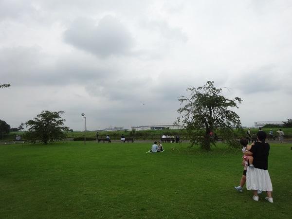 200724成田印旛沼 (8)