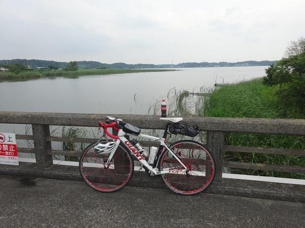 200724成田印旛沼 (18)