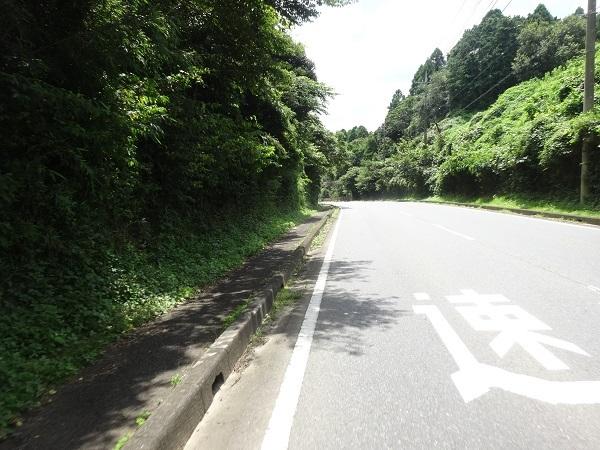200801蓮沼+飯高 (9)