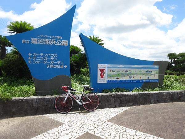 200801蓮沼+飯高 (11)