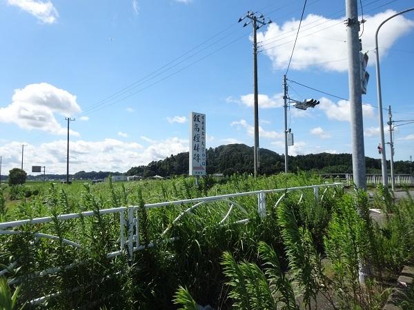 200801蓮沼+飯高 (23)