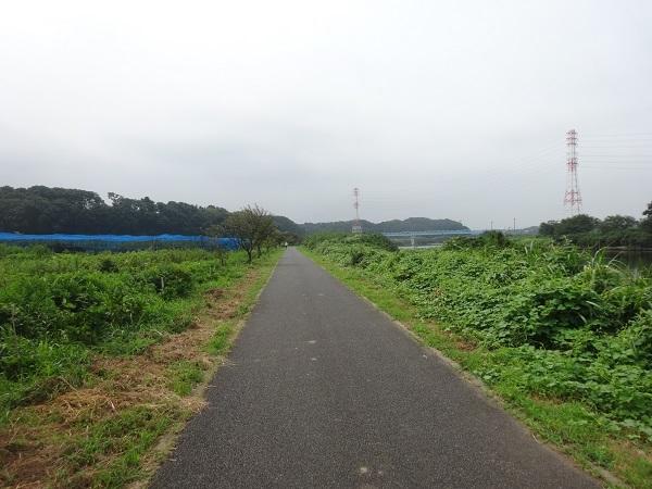 200808秋元牧場_長生き展望台 (3)