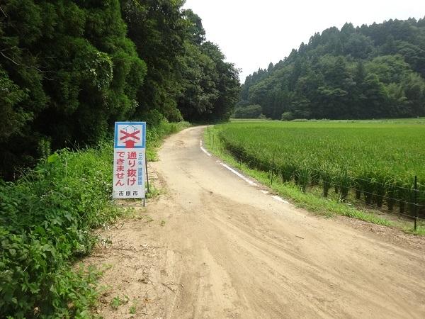 200808秋元牧場_長生き展望台 (10)