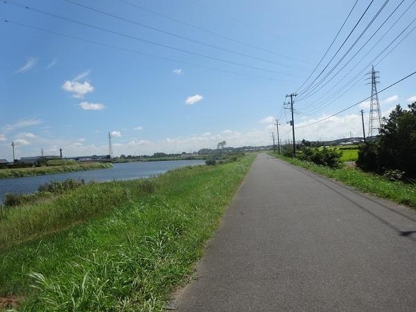 200829印旛沼周辺 (3)