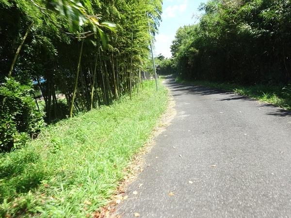 200829印旛沼周辺 (4)