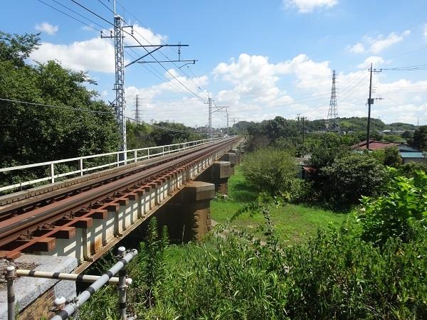 200829印旛沼周辺 (8)
