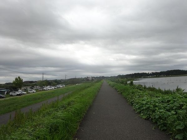 200919ご近所 (3)