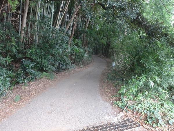 200919ご近所 (10)