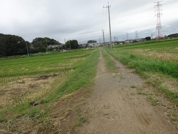 200919ご近所 (13)
