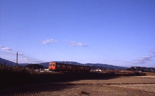 r389-2.jpg