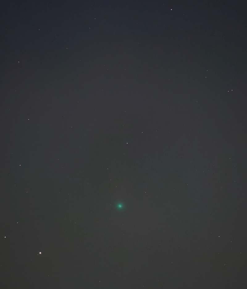 BORG107FLによるネオワイズ彗星 2020年7月31日