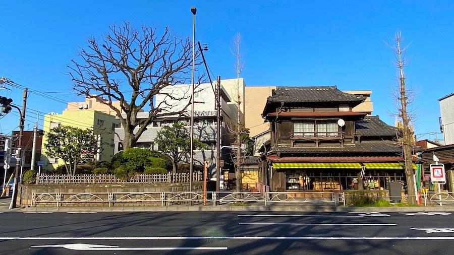 「志村一里塚」ー国指定史跡ー5
