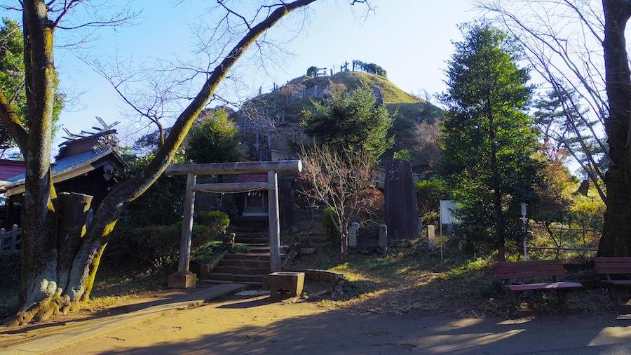 「荒幡冨士」2